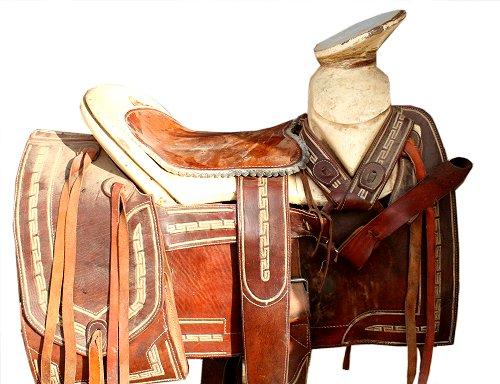 the western saddle overview horse pros com rh horse pros com