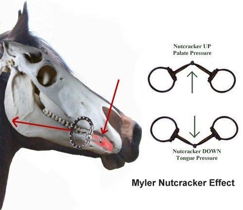 Snaffle bit basics horse pros nutcracker effect of single joint snaffle ccuart Gallery