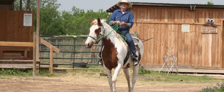 This horse rides the trails with just a flat halter.