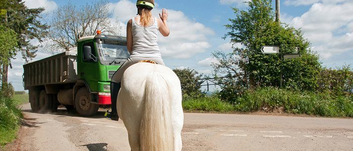 Teach your horse to ride in traffic